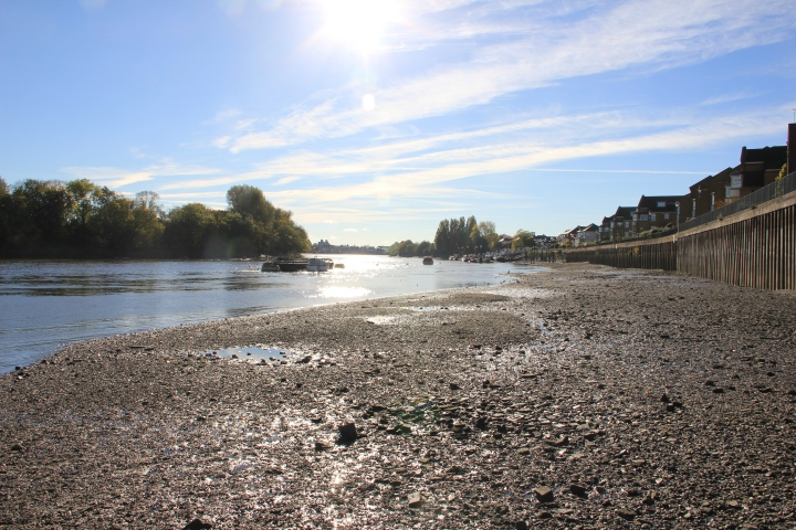 river at Chiswick